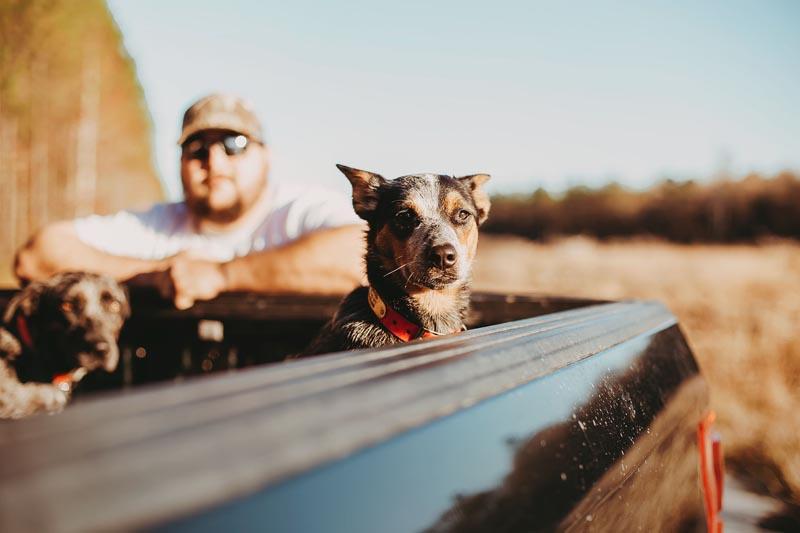 Preston and The Pups