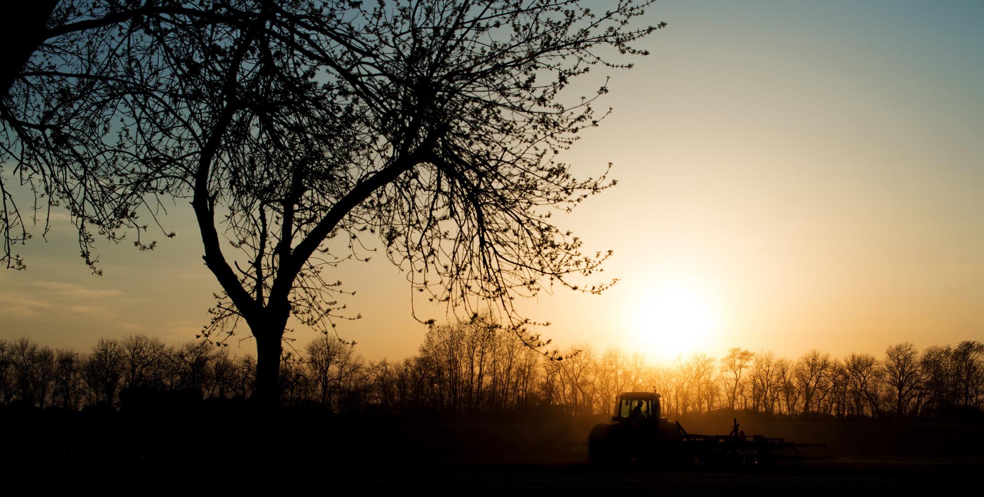 U-Pick Farms of Southern Georgia